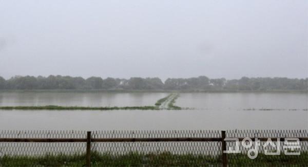 장항습지 안쪽 농경지도 물에 완전히 잠겼다. [사진제공=에코코리아]